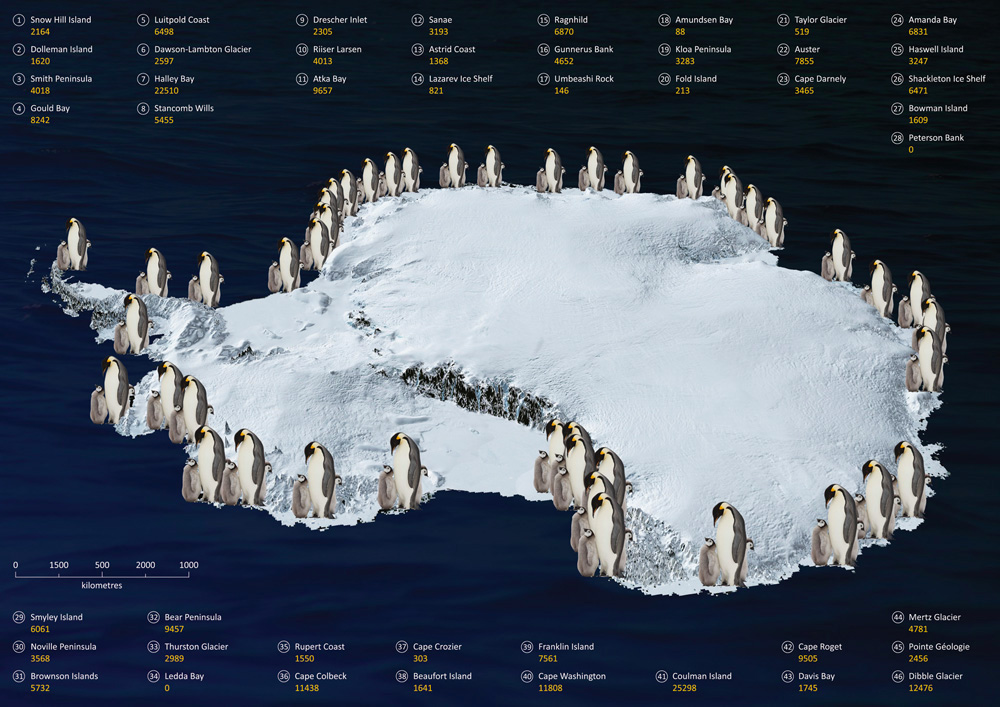 Scientists Count Penguins By Satellite Find Twice As Many As - Satellite map of antarctica