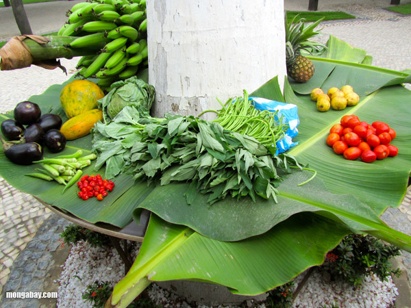 Vegetables in a Congo market. Photo by: Nancy Butler