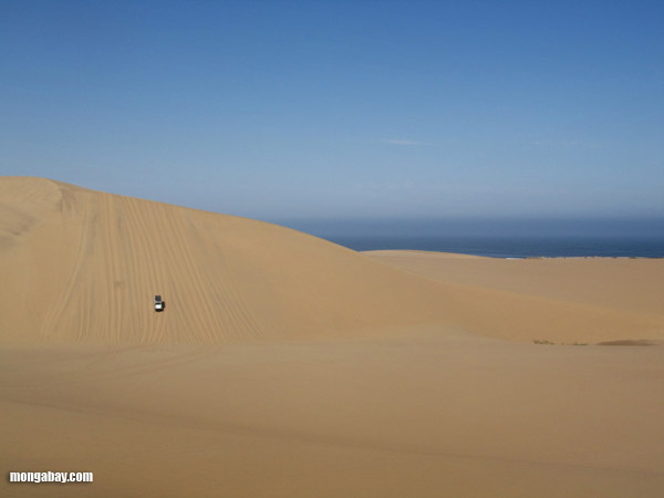 4x4 driving down a giant sand dune in Namibia.