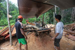 Workers milling timber at an illegal sawmill in Borneo