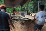 Illegal logging operation in Borneo [kalteng_0217]