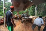 Illegal logging operation in Borneo [kalteng_0248]