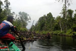 Canal in the Borneo peat forest