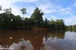 Deluxe Borneo jungle tour boat