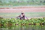 Malagasy man fishing [madagascar_ankarafantsika_0594]