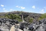 Tsingy bridge [madagascar_ankarana_0337]