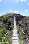 Tsingy bridge [madagascar_ankarana_0339]