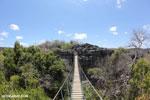 Tsingy bridge [madagascar_ankarana_0340]