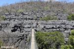 Tsingy bridge [madagascar_ankarana_0344]