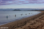 Villagers fishing on a beach in Maroantsetra [madagascar_maroantsetra_0278]