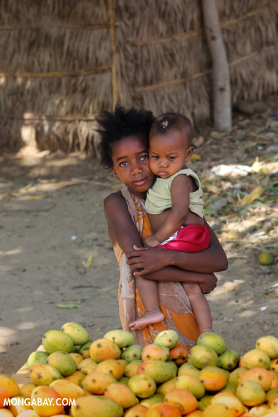 Children selling mangoes in Madagascar. According to the CIA, Madagascar is 21st in the world for population growth with a growth rate of 2.68 percent. Photo by: Rhett A. Butler.