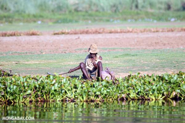 Malagasy man fishing