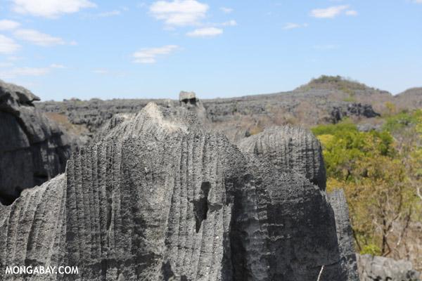 Tsingy in Ankarana