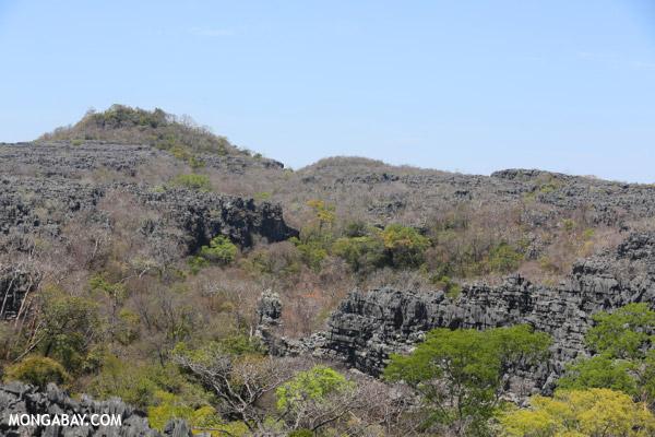 Limestone karst in Madagascar