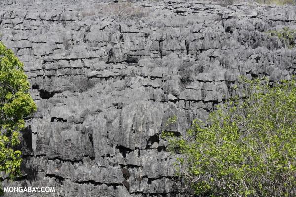 Tsingy in Madagascar