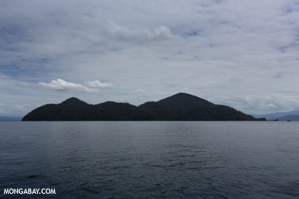 Nosy Mangabe, the big blue island