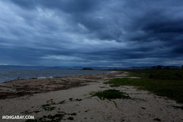 Maroantsetra beach