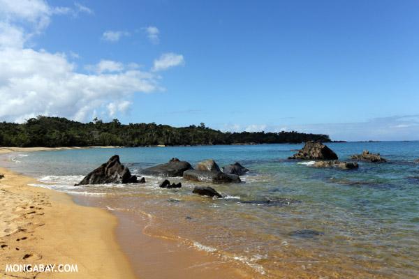 White sand beach at Tampolo on the Masoala Peninsula