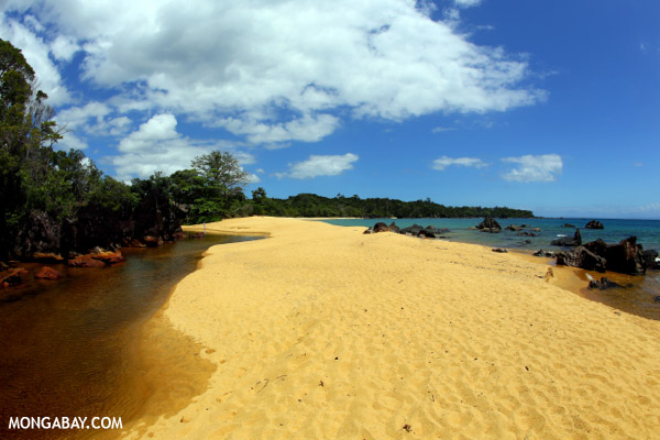 White sand beach on Madagascar's Masoala Peninsula