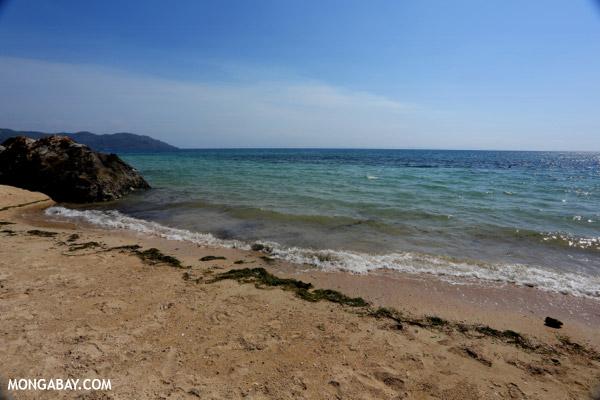 Nosy Komba beach