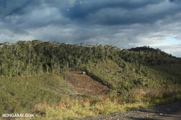 Deforestation near Andasibe-Mantadia National Park