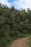 Mining road in Madagascar
