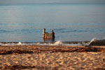 Women fishing in the Bay of Antongil [madagascar_1849]