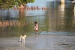 Vezo child walking near mangroves