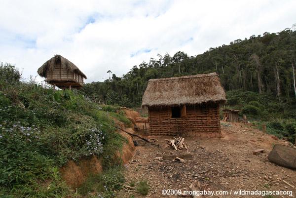 Huts near Mantadia