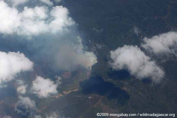 Aerial view of forest burning in Madagascar