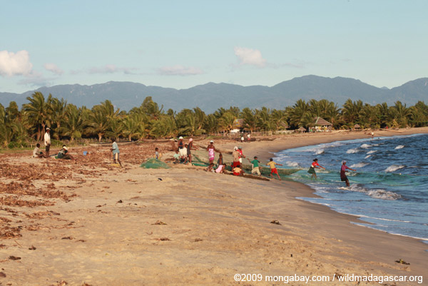 Community fishing on the beach near Maroantsetra