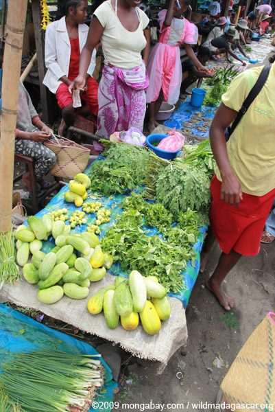 Vegetables being sold in the Maroantsetra market