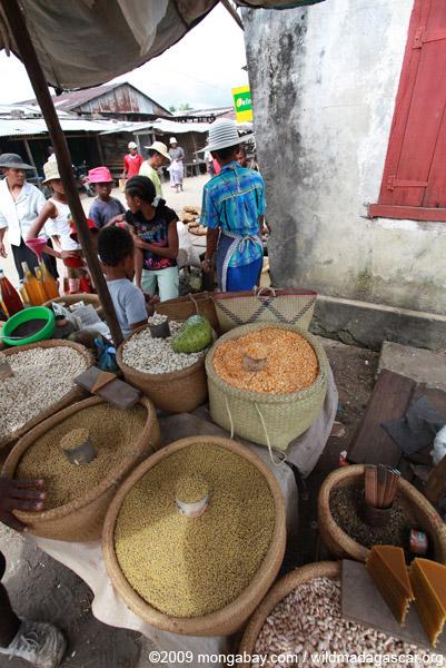 Grain being sold in the Maroantsetra market