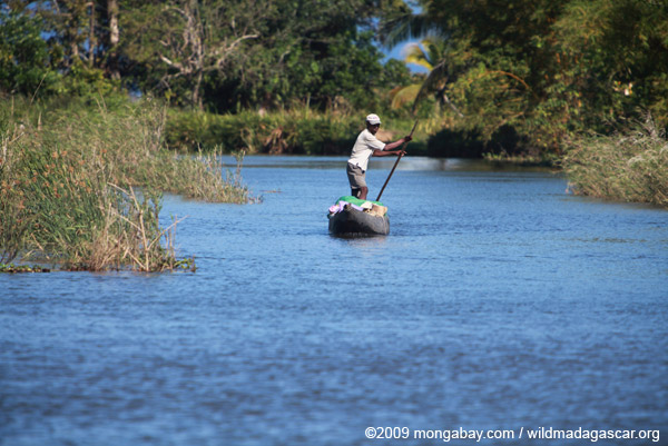 Man poling his pirogue
