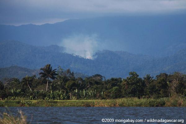 Forest fire near Masoala National Park