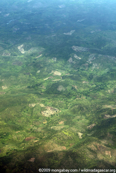Deforestation in Makira