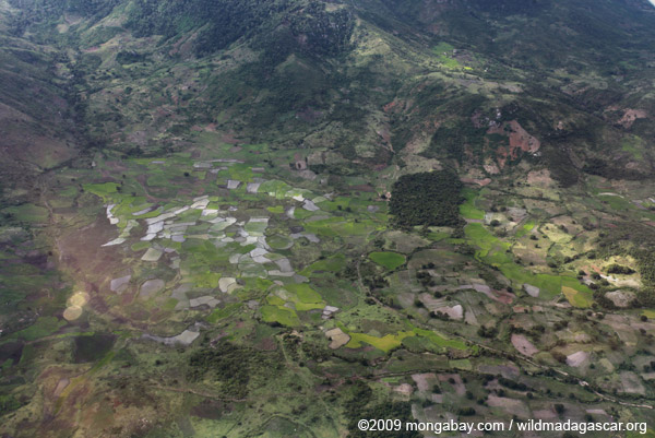 Aerial view of rice fields outside of Fort Dauphin