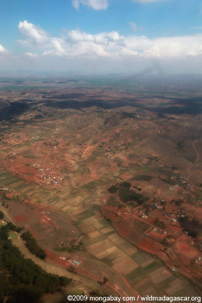 Rice field near Tana (aerial view)