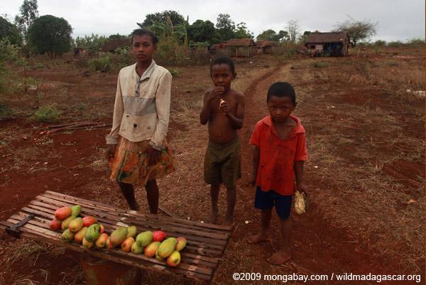 Children selling mangoes along RN6 from Joffreville to Ankarana