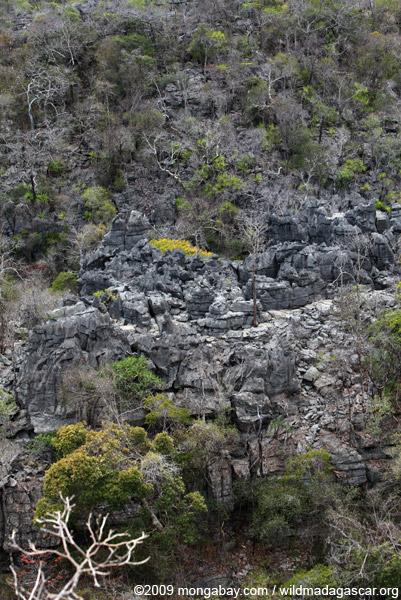Aerial view of Ankarana tsingy