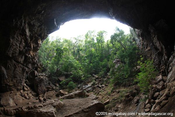 Ankarana cave