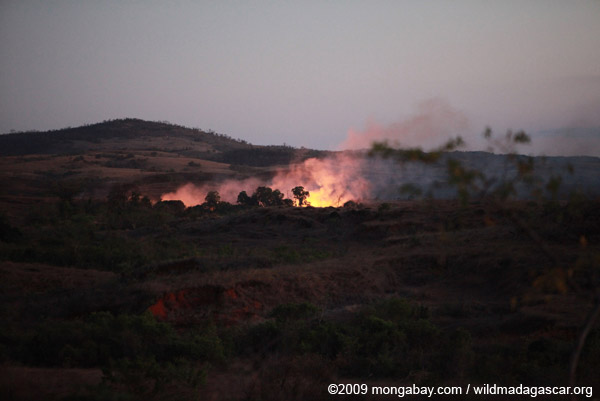 Bush fire in Madagascar. Photo by: Rhett A. Butler.