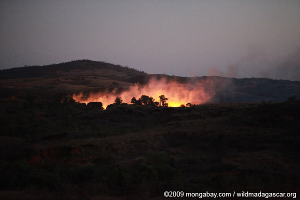 Brushfire in Madagascar