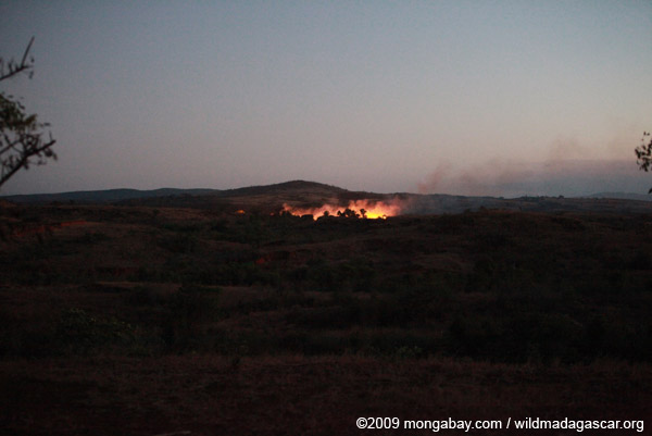 Landclearing fire in Madagascar