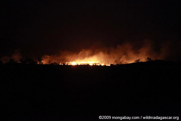 Brushfire in Madagascar