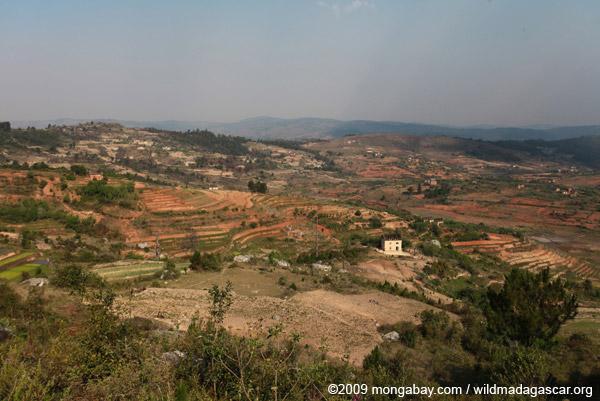 Agricultural landscape of Madagascar's Central Highlands
