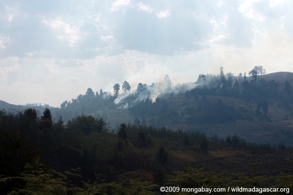 Forest or brush fire in Madagascar