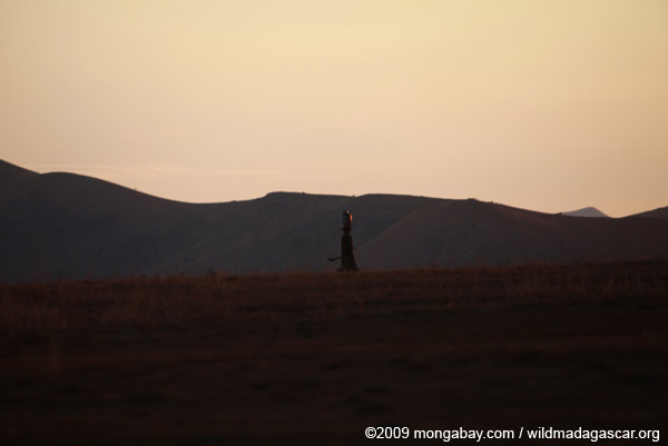 Woman walking at sunset near Andringitra