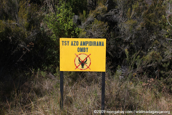 No cattle grazing sign (