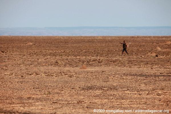 Man walking across a desolate savanna in Madagascar